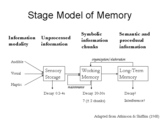 human memory model Many real-life situations can be modeled using logarithmic functions, including: earthquake intensity human memory pace of life in according to this model.
